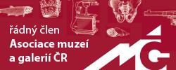 Asociace muzeí a galerií ČR